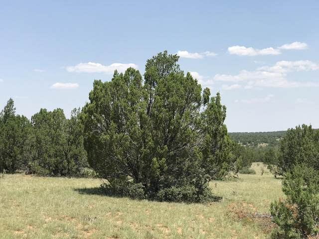 0 Rockin Lady Trail, Santa Rosa, NM 88435 (MLS #977231) :: Sandi Pressley Team