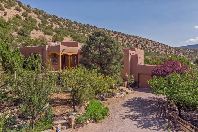 166 Camino De San Francisco, Placitas, NM 87043 (MLS #977249) :: Berkshire Hathaway HomeServices Santa Fe Real Estate