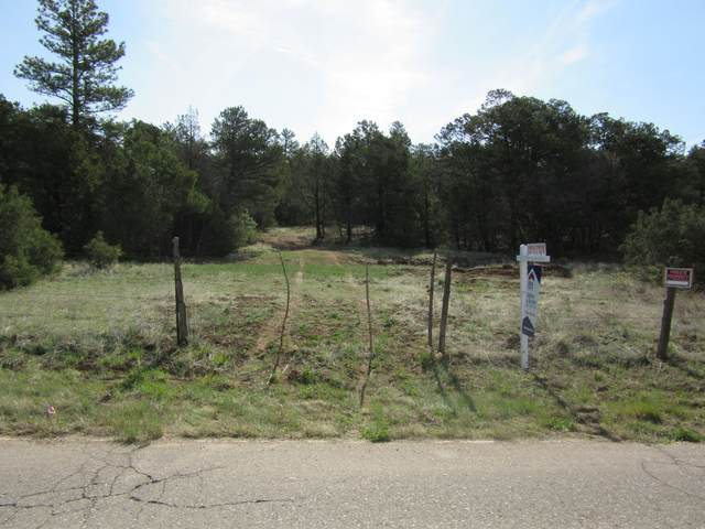 70 Anaya Road, Tijeras, NM 87059 (MLS #977277) :: Sandi Pressley Team