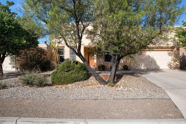 6601 Salt Cedar Trail NW, Albuquerque, NM 87120 (MLS #977285) :: The Bigelow Team / Red Fox Realty