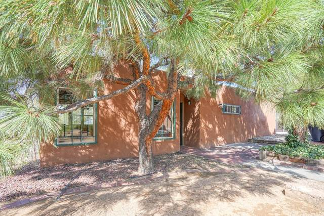 247 Monte Alto Place NE, Albuquerque, NM 87123 (MLS #977286) :: Campbell & Campbell Real Estate Services