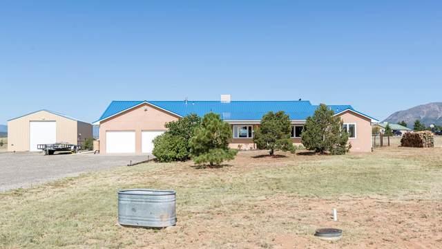 59 El Cielo Azul Circle, Edgewood, NM 87015 (MLS #977334) :: Campbell & Campbell Real Estate Services