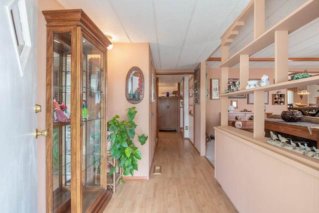 347 Antelope Circle SE, Albuquerque, NM 87123 (MLS #977345) :: Sandi Pressley Team