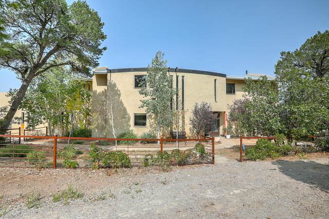 2 La Dolce Vita Place, Tijeras, NM 87059 (MLS #977385) :: Sandi Pressley Team
