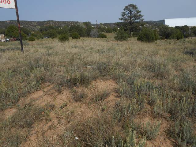 22 Rincon Loop, Tijeras, NM 87059 (MLS #977426) :: Sandi Pressley Team