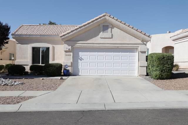 8729 Palomar Avenue NE, Albuquerque, NM 87109 (MLS #977436) :: Sandi Pressley Team