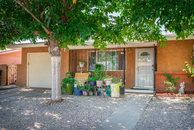 317 55TH Street NW, Albuquerque, NM 87105 (MLS #977453) :: The Bigelow Team / Red Fox Realty