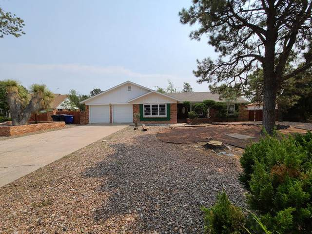 4118 Cherrydale Court NW, Albuquerque, NM 87107 (MLS #977476) :: Campbell & Campbell Real Estate Services