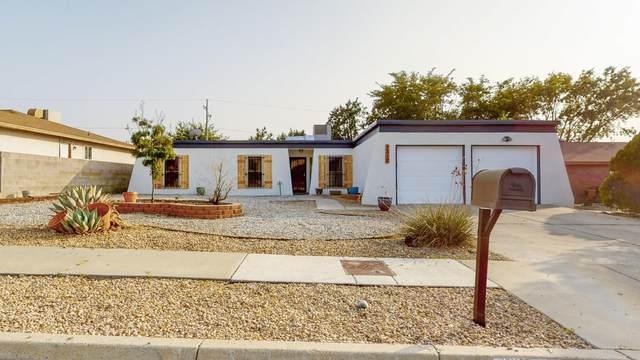 7312 Marilyn Avenue NE, Albuquerque, NM 87109 (MLS #977477) :: Sandi Pressley Team