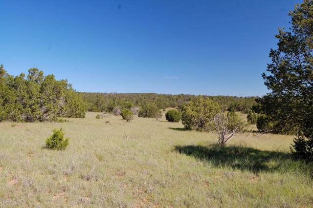 Manzano Morning Lots 49-50, Estancia, NM 87016 (MLS #977494) :: The Buchman Group