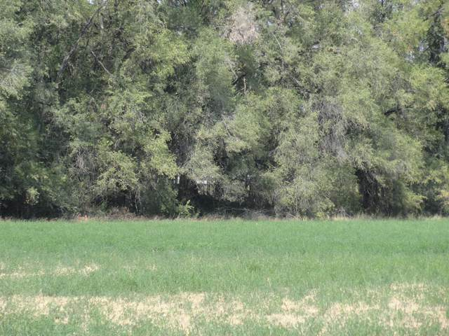 Molina Road Tract A2b, Peralta, NM 87042 (MLS #977560) :: The Bigelow Team / Red Fox Realty