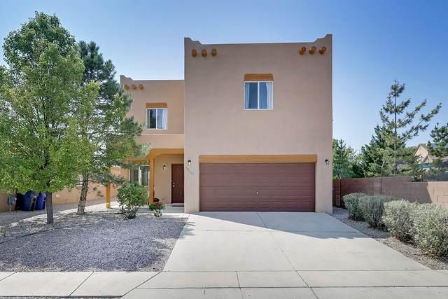 10519 Salerno Street NW, Albuquerque, NM 87114 (MLS #977662) :: HergGroup Albuquerque