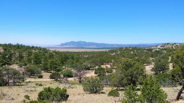 243 Agua Fria Trail, Datil, NM 87821 (MLS #977677) :: Keller Williams Realty
