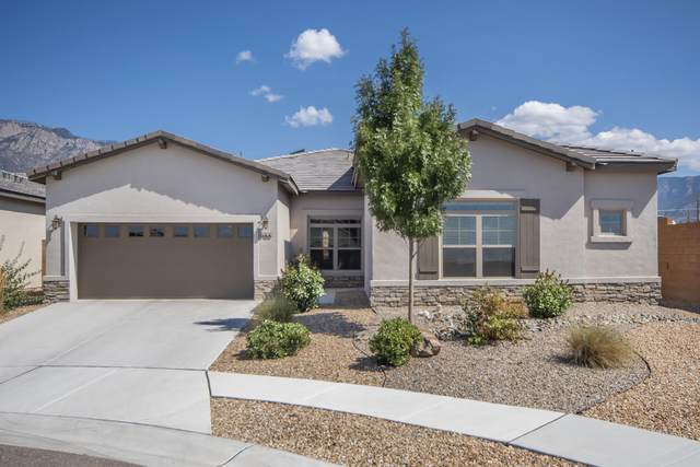 8100 Ronan Court, Albuquerque, NM 87122 (MLS #977760) :: The Bigelow Team / Red Fox Realty