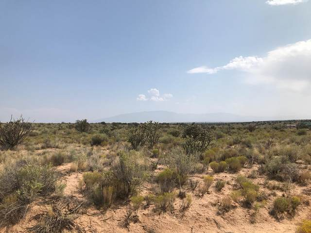 2902 41st Street NW, Rio Rancho, NM 87124 (MLS #977925) :: Campbell & Campbell Real Estate Services