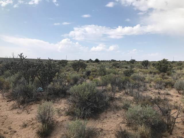 2300 41St-Block 81 Lot: 1 Unit: 23 Street NW, Rio Rancho, NM 87144 (MLS #977926) :: The Buchman Group