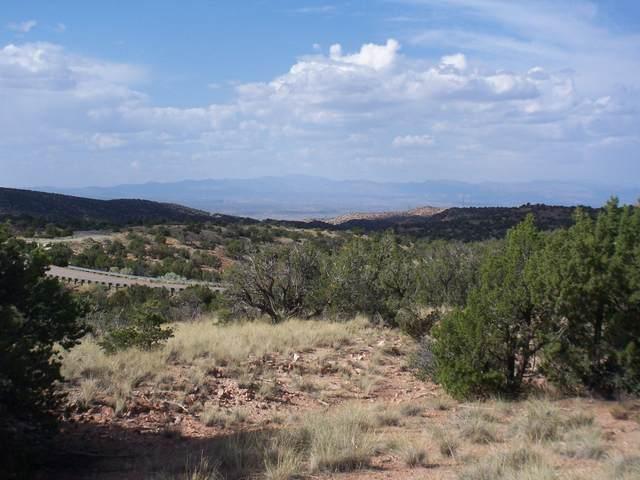Wild Marigold Ct - Lot 52, Placitas, NM 87043 (MLS #977954) :: Keller Williams Realty