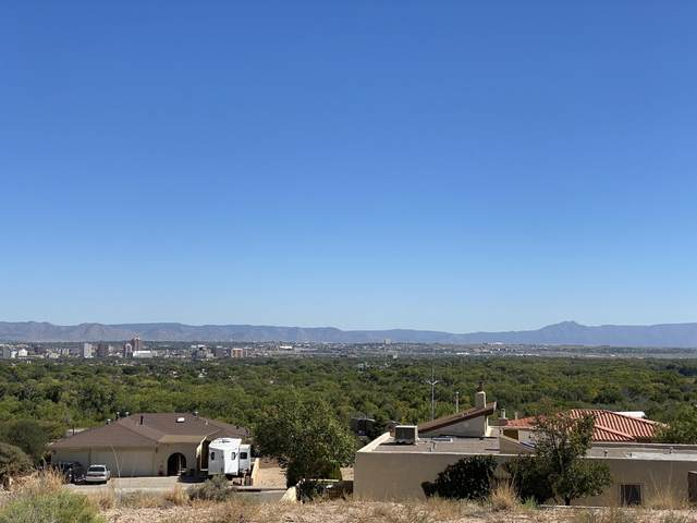Cliffside Drive NW, Albuquerque, NM 87105 (MLS #978306) :: The Buchman Group