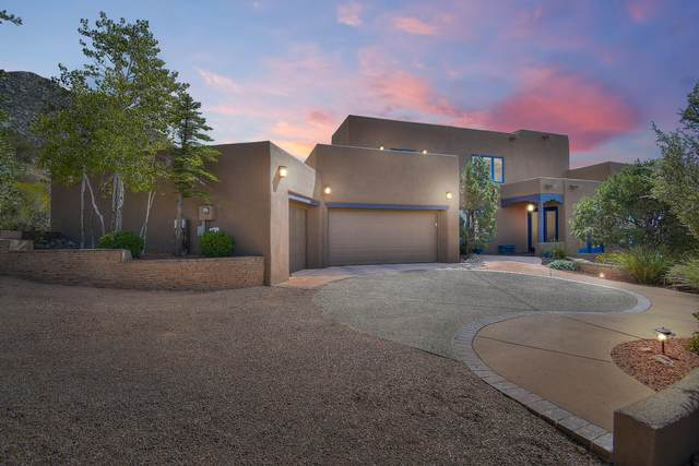 53 Rock Ridge Court NE, Albuquerque, NM 87122 (MLS #978481) :: Berkshire Hathaway HomeServices Santa Fe Real Estate