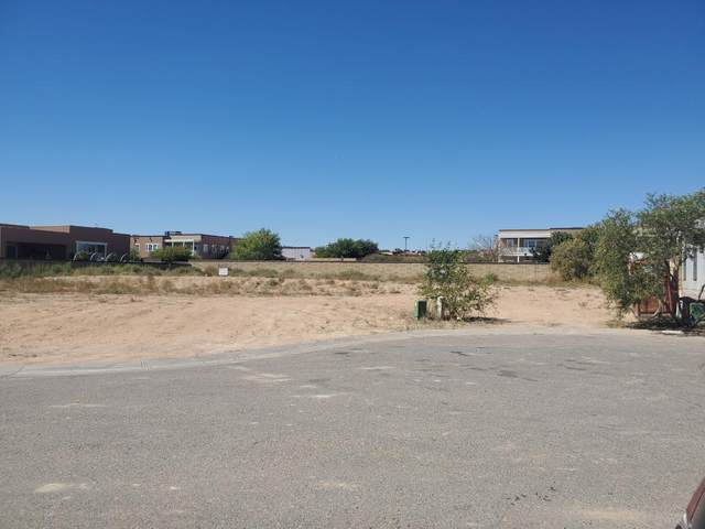 6315 Blueberry Lane NW, Albuquerque, NM 87120 (MLS #978529) :: The Bigelow Team / Red Fox Realty