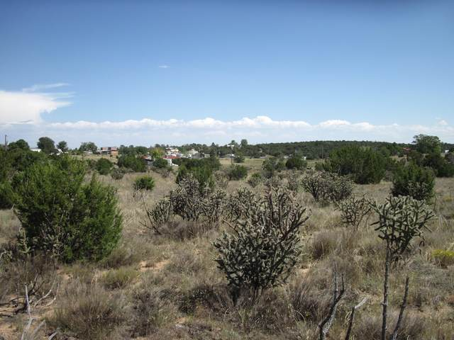 95 Skyline Drive, Edgewood, NM 87015 (MLS #978538) :: Campbell & Campbell Real Estate Services