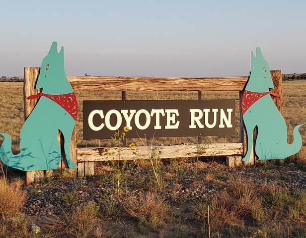 Coyote Loop, Moriarty, NM 87035 (MLS #978586) :: Sandi Pressley Team