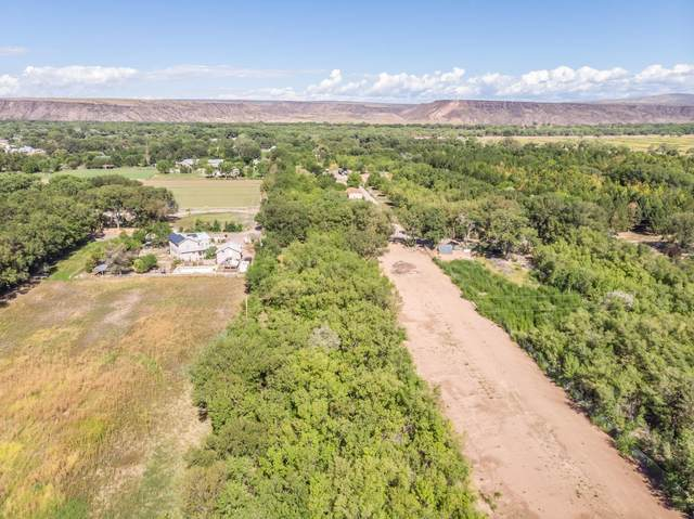 0 Bowersville Road, Algodones, NM 87001 (MLS #978624) :: The Buchman Group