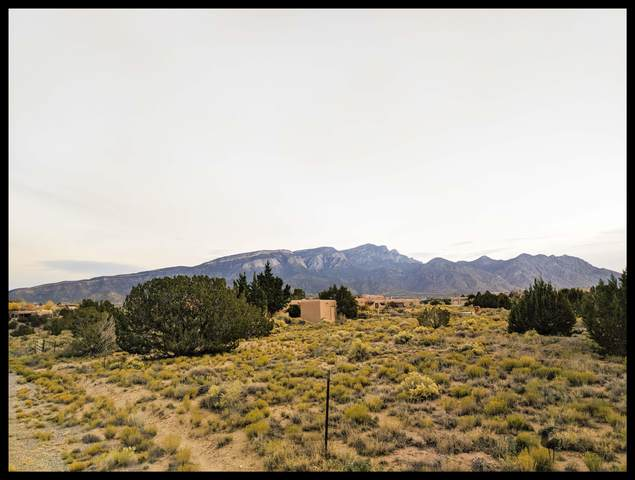 Lot 126 Ocate Court, Placitas, NM 87043 (MLS #978657) :: Berkshire Hathaway HomeServices Santa Fe Real Estate