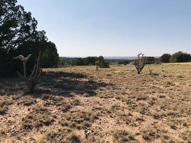 000 Los Novios, Santa Rosa, NM 88435 (MLS #978672) :: Keller Williams Realty
