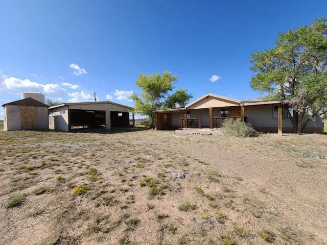17 Pinto Drive, Edgewood, NM 87015 (MLS #978677) :: The Bigelow Team / Red Fox Realty