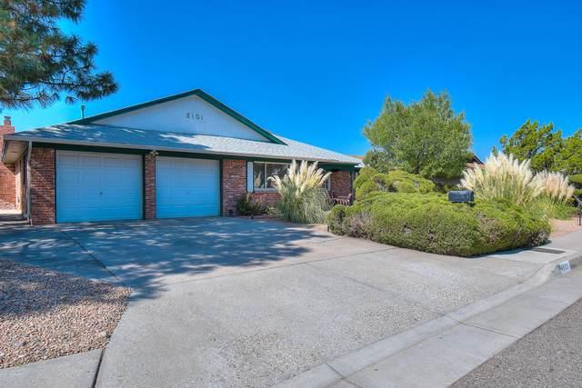 3101 Matador Drive NE, Albuquerque, NM 87111 (MLS #978711) :: Berkshire Hathaway HomeServices Santa Fe Real Estate