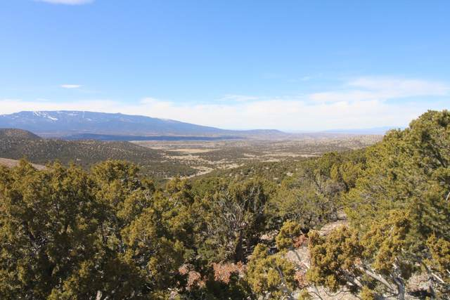 Nm 344 And Ranchitos Road, Sandia Park, NM 87047 (MLS #978713) :: The Bigelow Team / Red Fox Realty