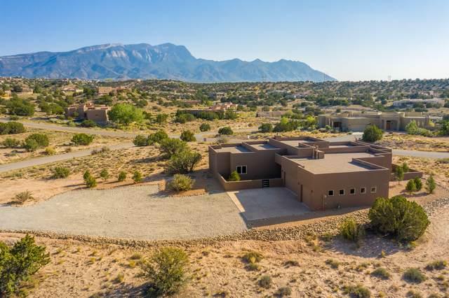 1 Alexi Place, Placitas, NM 87043 (MLS #978802) :: Berkshire Hathaway HomeServices Santa Fe Real Estate