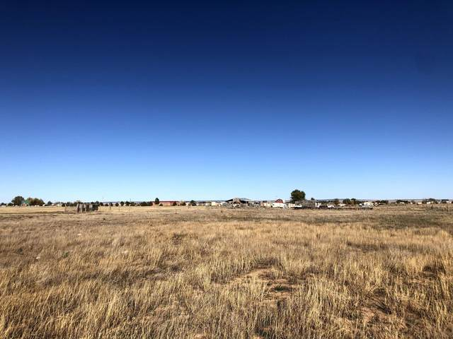 Teresa Lane, Moriarty, NM 87035 (MLS #979059) :: The Bigelow Team / Red Fox Realty