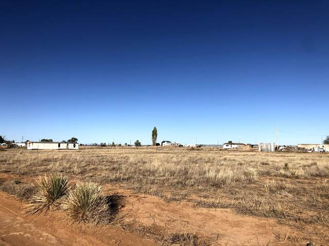 Tammy Lane, Moriarty, NM 87035 (MLS #979060) :: The Bigelow Team / Red Fox Realty