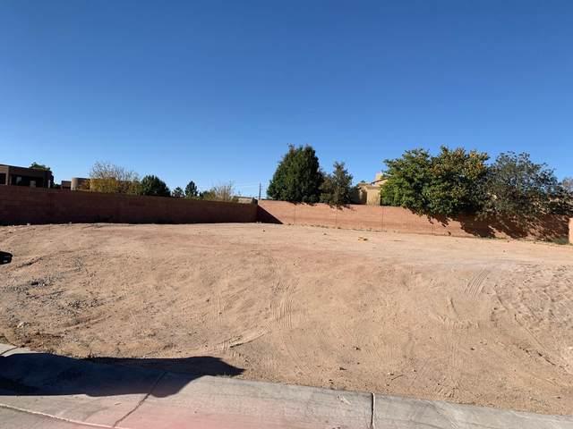 9209 Desert Ridge Pointe Court NE, Albuquerque, NM 87122 (MLS #979149) :: Berkshire Hathaway HomeServices Santa Fe Real Estate