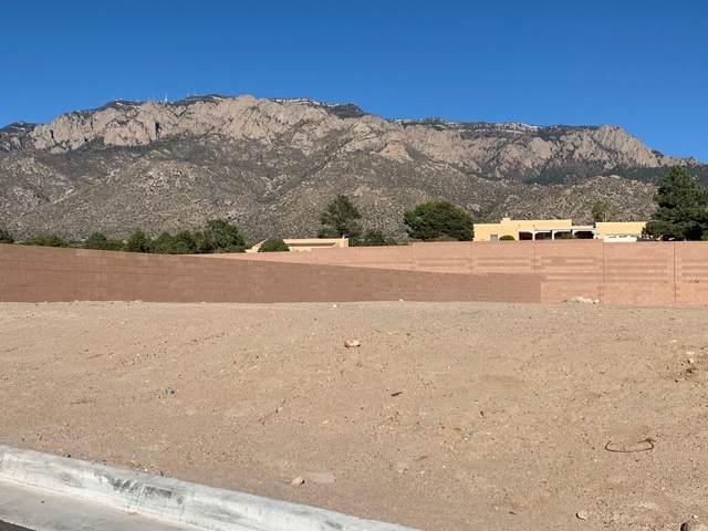 804 Harrier Hawk Drive NE, Albuquerque, NM 87122 (MLS #979165) :: Keller Williams Realty