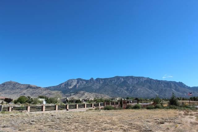 9120 Elena Drive NE, Albuquerque, NM 87122 (MLS #979192) :: The Bigelow Team / Red Fox Realty