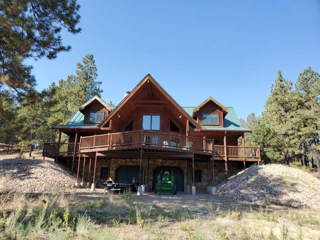 51 Haas Road, Quemado, NM 87829 (MLS #979207) :: Campbell & Campbell Real Estate Services