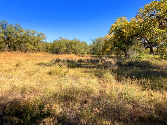 21 Cherokee Circle, Belen, NM 87002 (MLS #979259) :: The Buchman Group