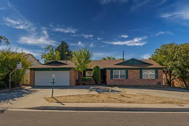 12304 Manitoba Drive NE, Albuquerque, NM 87111 (MLS #979288) :: The Buchman Group