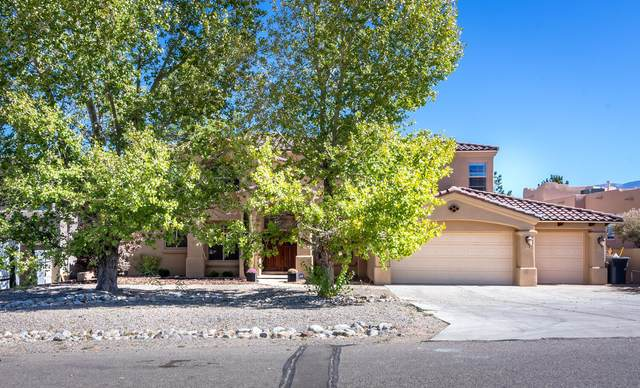 3110 Paladin Court NE, Rio Rancho, NM 87144 (MLS #979405) :: The Bigelow Team / Red Fox Realty