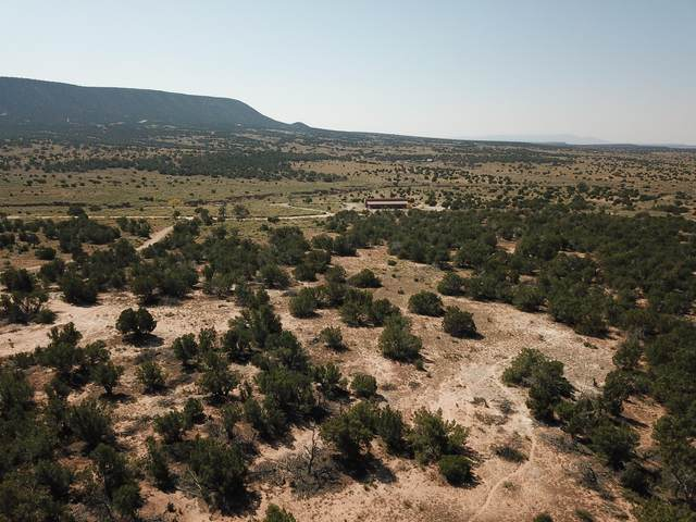 130 Deer Canyon Trail, Mountainair, NM 87036 (MLS #979431) :: The Bigelow Team / Red Fox Realty