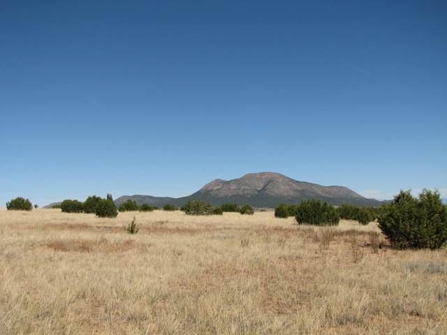 17 Troya Court, Tijeras, NM 87059 (MLS #979463) :: Berkshire Hathaway HomeServices Santa Fe Real Estate