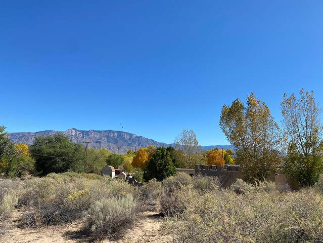 118 Stella Lane, Corrales, NM 87048 (MLS #979465) :: Campbell & Campbell Real Estate Services