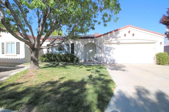 1305 Villa Campo NE, Albuquerque, NM 87113 (MLS #979468) :: Sandi Pressley Team