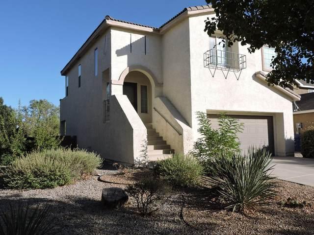 10904 Desert Dreamer Street NW, Albuquerque, NM 87114 (MLS #979478) :: Sandi Pressley Team