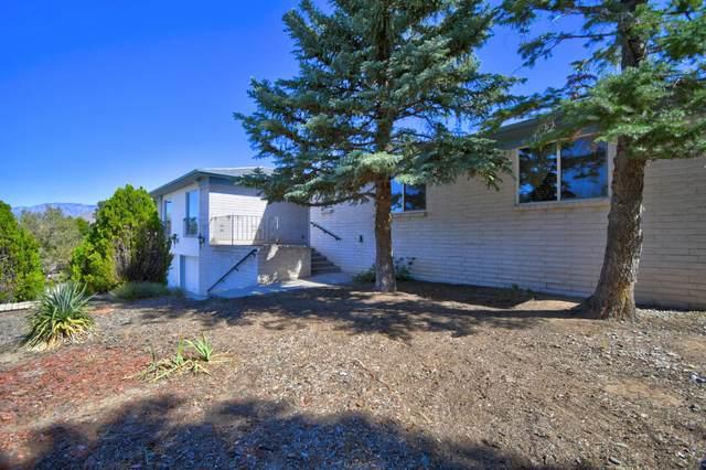 1024 Wagon Wheel Street SE, Albuquerque, NM 87123 (MLS #979548) :: The Bigelow Team / Red Fox Realty