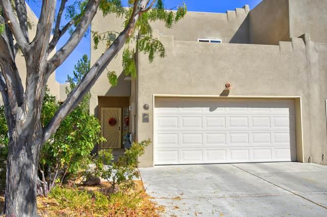 3605 Setaria Road NW, Albuquerque, NM 87120 (MLS #979553) :: Berkshire Hathaway HomeServices Santa Fe Real Estate