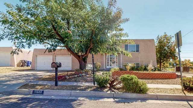 11600 Lexington Avenue NE, Albuquerque, NM 87112 (MLS #979565) :: The Buchman Group